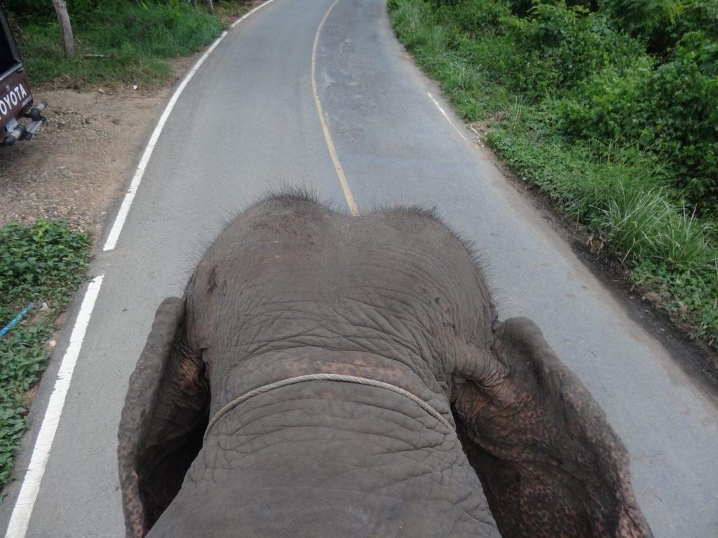 karen-elephant-camp-pai-9