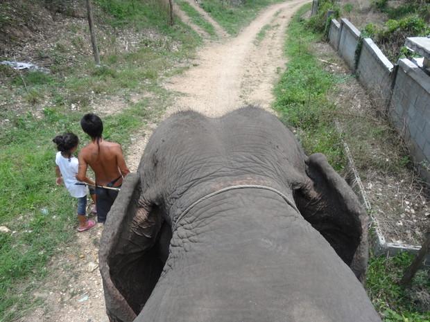 karen-elephant-camp-pai-4
