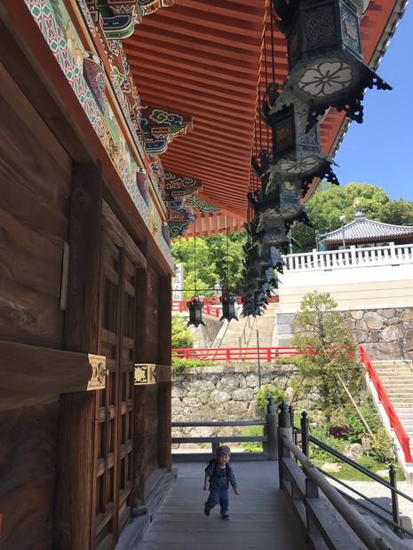 nakayama-temple-hyogo-11