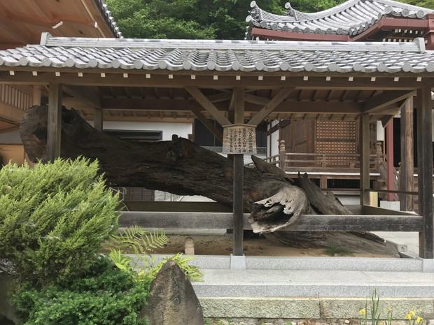 suma-temple-kobe-15