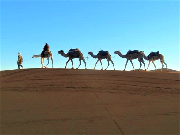 superb-view-ranking-sahara-desert
